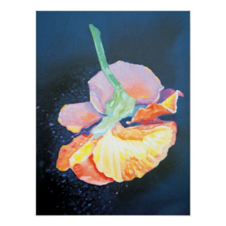 Flying Pansy Canvas Print