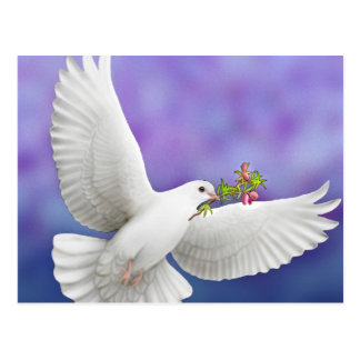 Flying Peace Dove Card