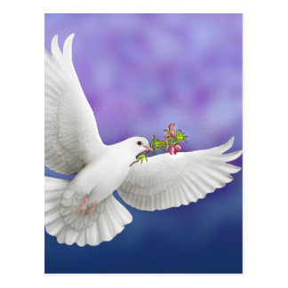 Flying Peace Dove Postcard
