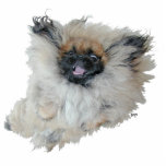"""Flying Pekingese Cutout<br><div class=""""desc"""">Fun Pekingese sculpture for yourself or as a gift to that special Pekingese loving friend! See this  design on clothing,  novelty and gift items! Buy several,  we discount for multiples!</div>"""