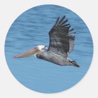 Flying Pelican 8 Sticker Stickers