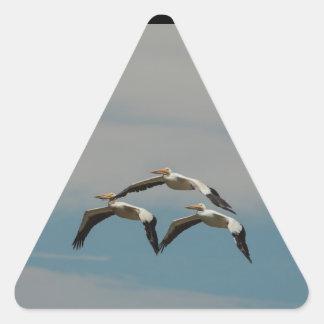 Flying Pelican Sticker