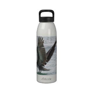 Flying Pelican Drinking Bottle