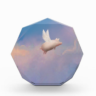 flying pig award