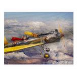 Flying Pig - Plane -The joy ride Postcard