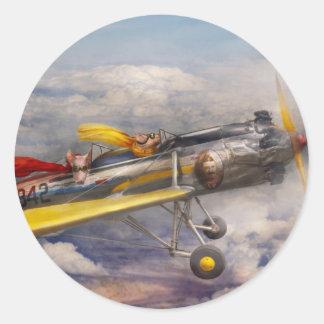 Flying Pig - Plane -The joy ride Classic Round Sticker