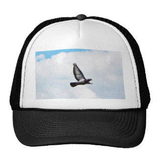 Flying Pigeon On Sky Trucker Hat