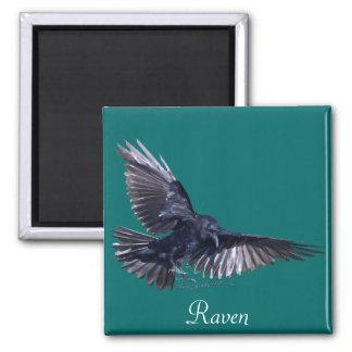 Flying Raven 2 Inch Square Magnet