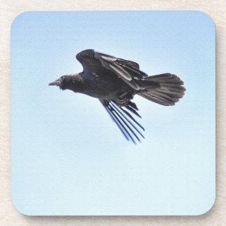 Flying Raven in Blue Sky HDR Photo Design Drink Coaster