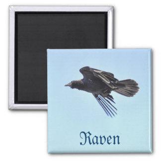 Flying Raven in Blue Sky HDR Photo Design Magnet