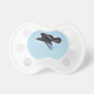 Flying Raven in Blue Sky HDR Photo Design Pacifier