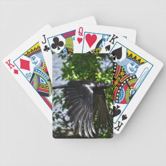 Flying Raven in Sunlight Wildlife Photo Bicycle Playing Cards