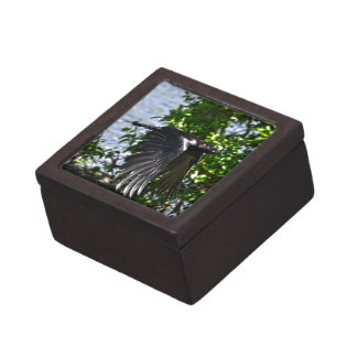 Flying Raven in Sunlight Wildlife Photo Jewelry Box