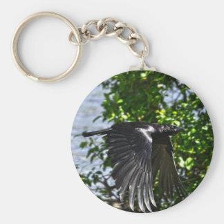 Flying Raven in Sunlight Wildlife Photo Keychain