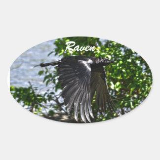 Flying Raven in Sunlight Wildlife Photo Oval Sticker
