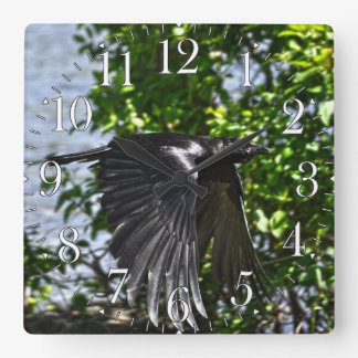 Flying Raven in Sunlight Wildlife Photo Square Wall Clock