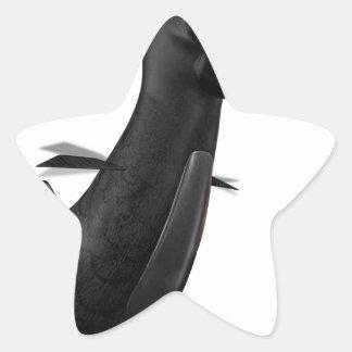 Flying Raven Star Sticker