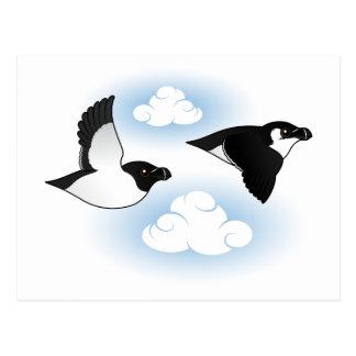 Flying Razorbills Postcard