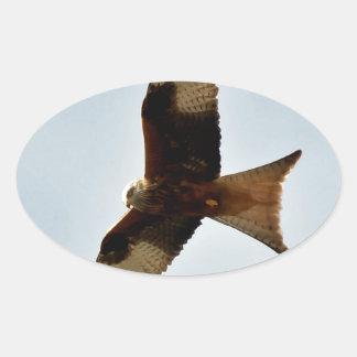 flying red kite oval sticker