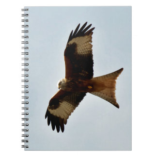 flying red kite spiral notebook