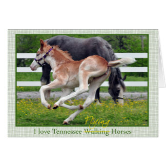 Flying Red Roan Card