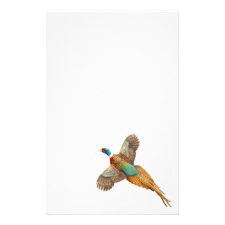 Flying Ringneck Pheasant Stationery