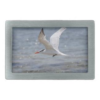 Flying Royal Tern Rectangular Belt Buckle