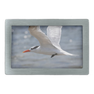 Flying Royal Tern Rectangular Belt Buckles