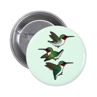 Flying Ruby-throated Hummingbird Pinback Buttons