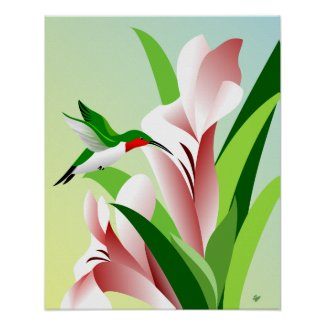 Flying Ruby Throated Male Hummingbird Poster
