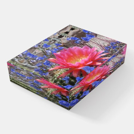Flying Saucer Cactus Bloom Paperweight