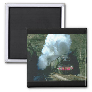 Flying Scotsman caught between_Steam Trains Magnet