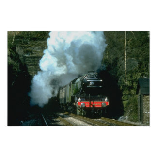 Flying Scotsman caught between tunnels at Barons W Poster