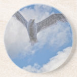 Flying Sea Gull & Clouds Drink Coaster