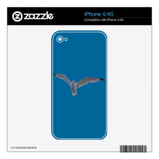 Flying Sea Gull & Clouds iPhone 4 Decals
