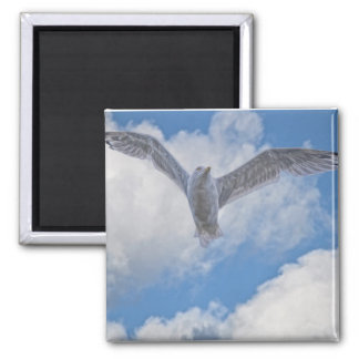 Flying Sea Gull & Cloudy Sky 2 Inch Square Magnet