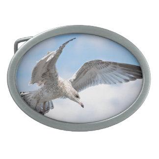 Flying Seagull Belt Buckles