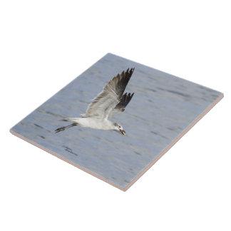 Flying Seagull Bird Tile