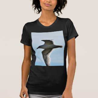 Flying Seagull Close Up T Shirt