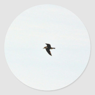 Flying Seagull High Round Sticker