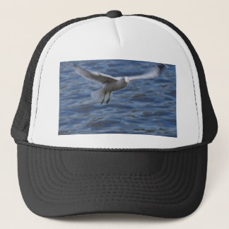 Flying seagull wanting to get attention trucker hat