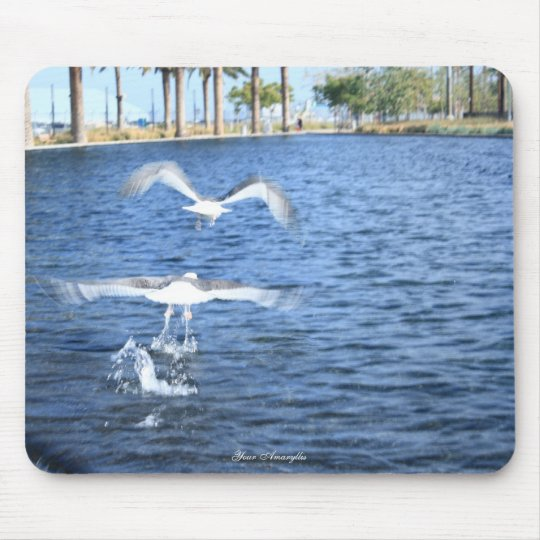 Flying Seagulls Mouse Pad
