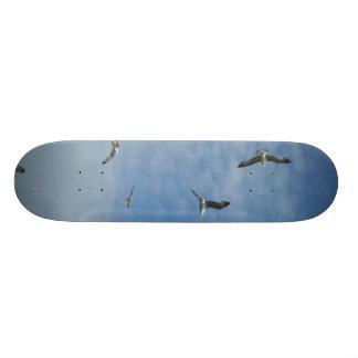 Flying Seagulls Skateboard