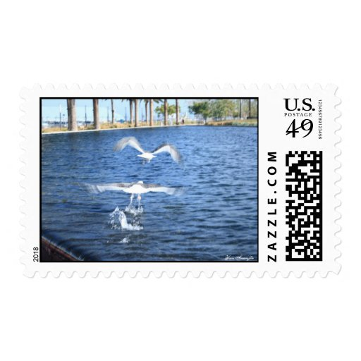 Flying Seagulls Stamps