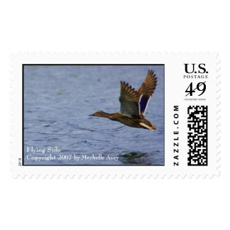 Flying Solo Stamps