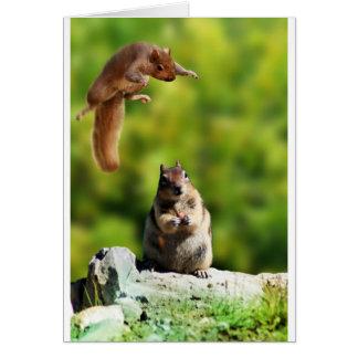 Flying squirrel card