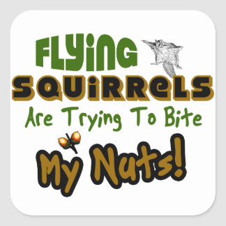 Flying Squirrels Square Sticker