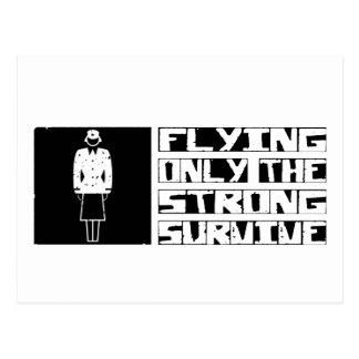 Flying Survive Postcard