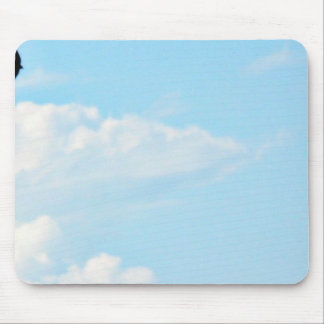 Flying Swallow Mousepads