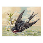 Flying swallow with more flower twig post cards